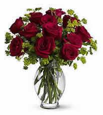dozen_roses