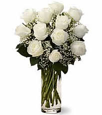 dozen_roses_ivory